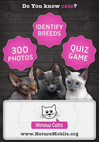 Apps For Pet Lovers cats hd