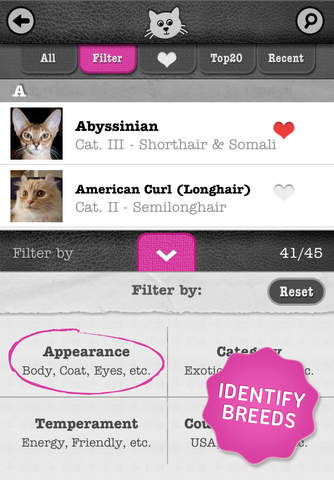 Apps For Pet Lovers cats hd2