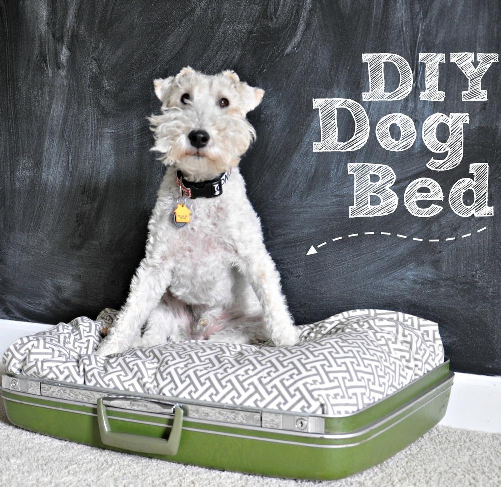 10 Best Diy Gift Tutorials For Your Dog Wiproo