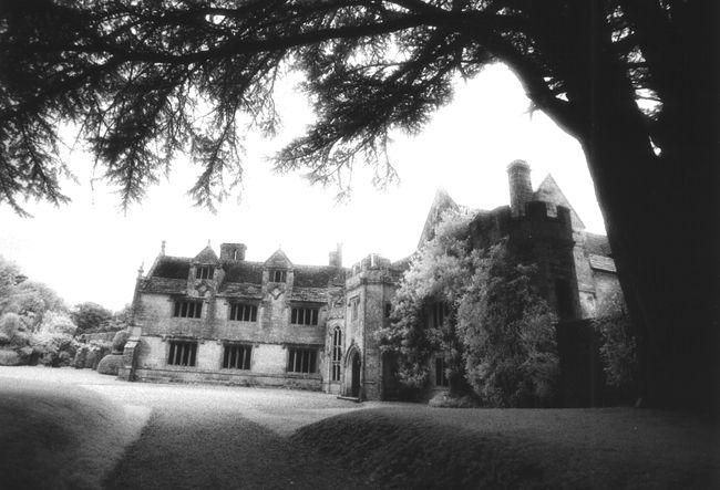athelhampton-hall