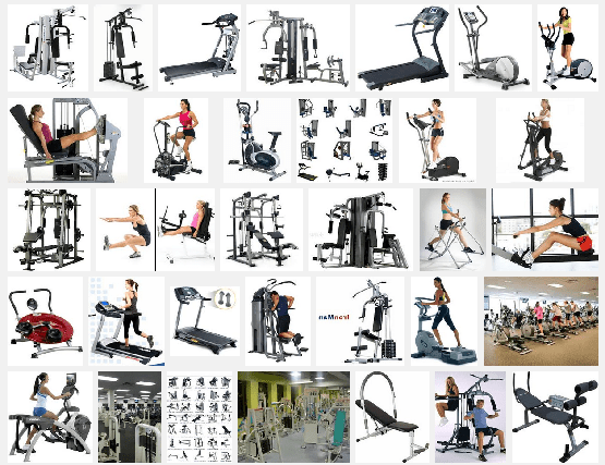 Top 10 Best Exercise Machines You Should Invest In Wiproo
